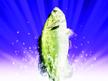 Fishing Master for Wii Fishing Master for Wii 2464SquallSnake7