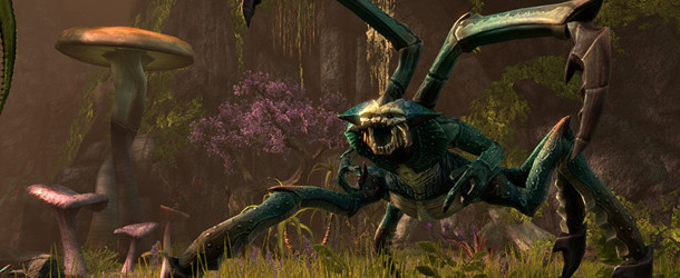 Sign Up for Elder Scrolls Online Beta Sign Up for Elder Scrolls Online Beta Elder Scrolls Online