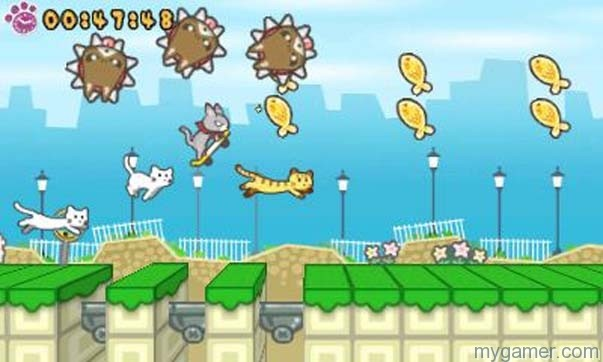 Skater Cat is a colorful game