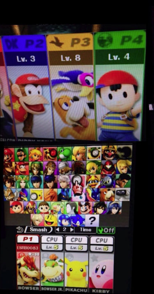 Smash Bros Roster Leak Is This the Smash Bros Full Roster? Is This the Smash Bros Full Roster? Smash Bros Roster Leak 536x1024